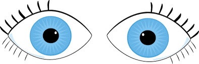 eyesonroad